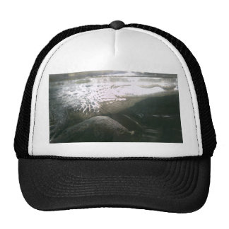 Gorra del cocodrilo