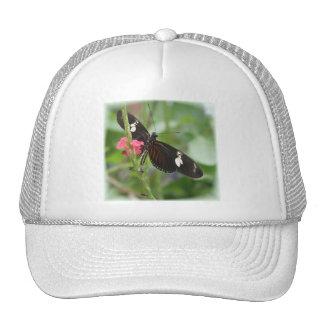 Gorra del efecto mariposa