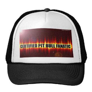 Gorra del fanático de Pitbull