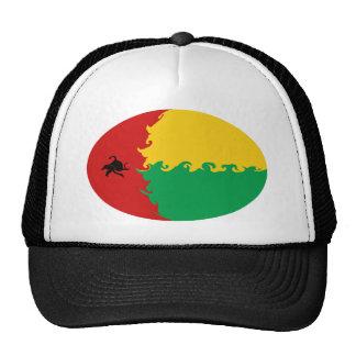 Gorra Gnarly de la bandera de Guinea-Bissau