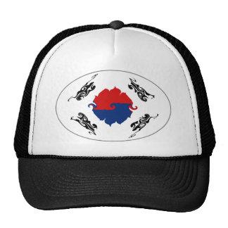 Gorra Gnarly de la bandera de la Corea del Sur