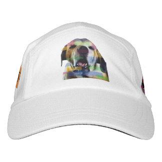 Gorra grande del perro