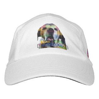 Gorra grande del perro II