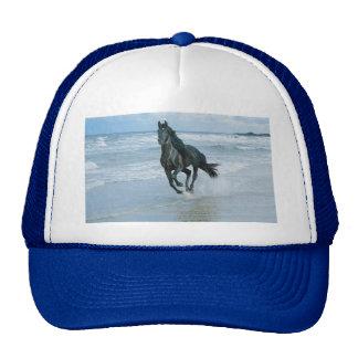 Gorra imagen caballo