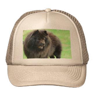 Gorra negro del camionero del jjhelene del perro