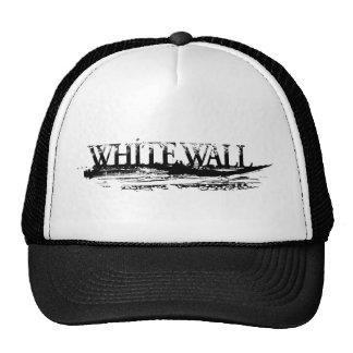 Gorra oficial del logotipo de la pintada de la PAR