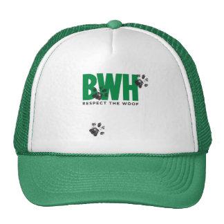 Gorra verde del camionero
