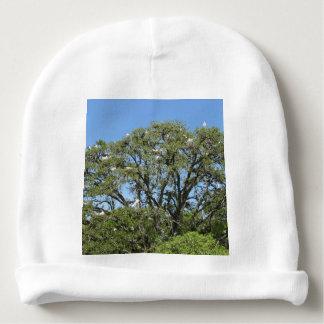 Gorrito Para Bebe Egrets blancos en un árbol