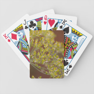 Gotitas en la flor de la semilla de eneldo baraja de cartas bicycle
