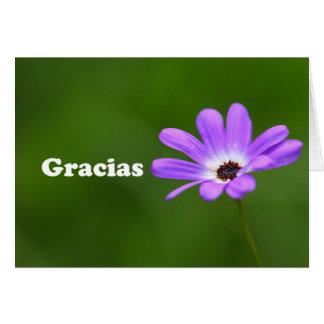 Gracias - gracias en español con la margarita tarjeta de felicitación