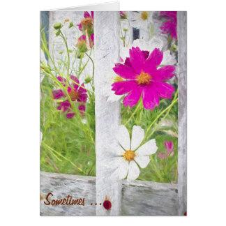 gracias jardín de flores del cosmos tarjeta de felicitación