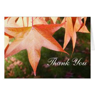 Gracias las tarjetas - hojas de otoño