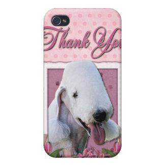 Gracias - los tulipanes rosados - Bedlington Terri iPhone 4 Cárcasas