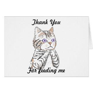 Gracias - mirando después de gato tarjeta pequeña