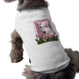 Gracias - perrito de Pitbull - Petey Ropa De Mascota