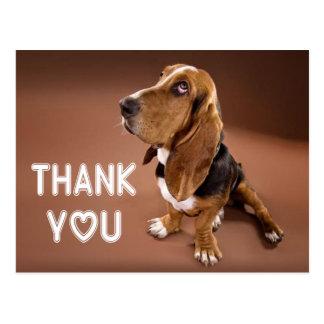 Gracias perro de perrito de Basset Hound Brown Postal