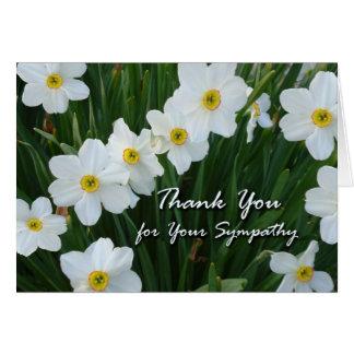 Gracias por condolencia, flores del narciso tarjeta de felicitación
