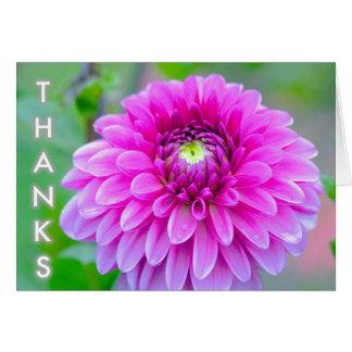 Gracias Tarjeta
