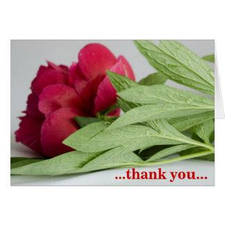 … gracias… tarjeta de felicitación