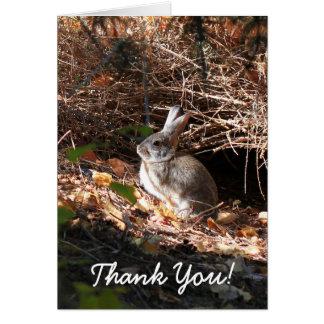 Gracias tarjeta de felicitación del conejo de
