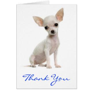 Gracias tarjeta de felicitación del perro de perri