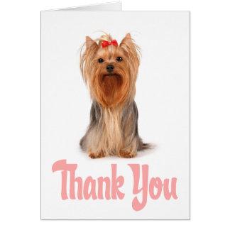 Gracias tarjeta del perrito de Yorkshire Terrier -
