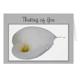 Gracias y pensando en usted las tarjetas de