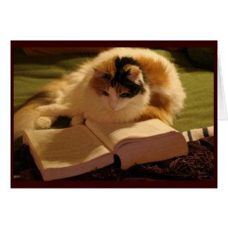 Grado felino Notecard Tarjeta Pequeña