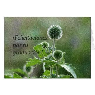 Graduación española tarjeta de felicitación