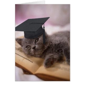 Graduación, gato con el gorra tarjeta de felicitación