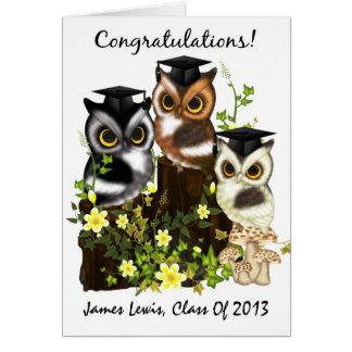 Graduación linda del búho a modificar para tarjeta de felicitación