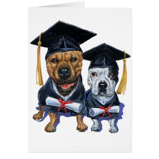 Graduación Felicitación