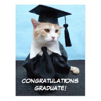 ¡Graduado de la enhorabuena Tarjetas Postales