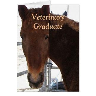 Graduado lindo del veterinario - caballo de la tarjeta de felicitación