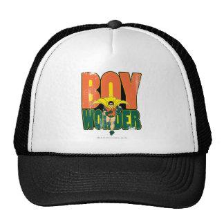 Gráfico de la maravilla del muchacho gorras