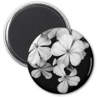 grafito blanco y negro imán redondo 5 cm