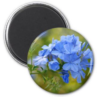 Grafito - flores azules del verano imán redondo 5 cm
