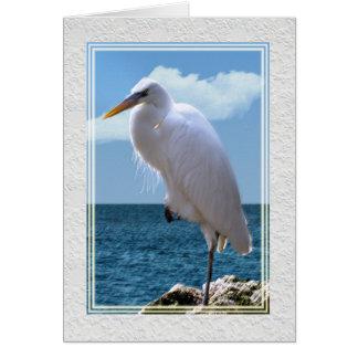 Gran Egret en el borde del agua Tarjeta De Felicitación