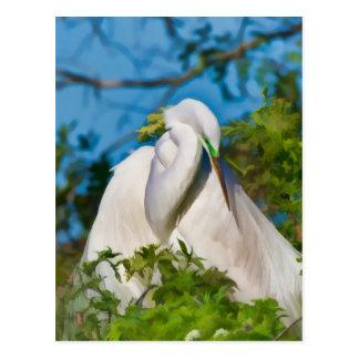 Gran Egret en el momento de la maternidad Postal