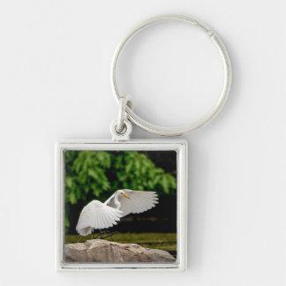 Gran Egret Llavero Cuadrado Plateado