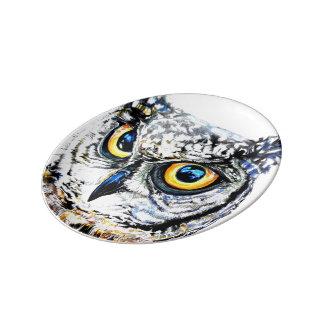 Gran placa del búho de cuernos plato de porcelana