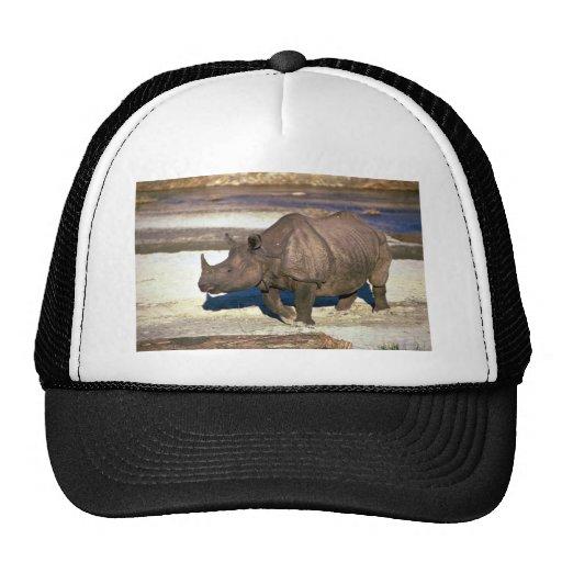 Gran rinoceronte Uno-De cuernos indio Gorros