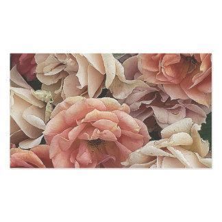 grandes rosas del jardín, melocotón suave tarjetas de negocios
