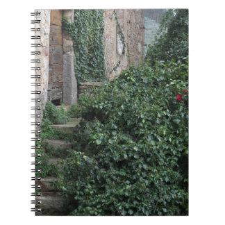 Granja abandonada vieja del país en las maderas cuaderno