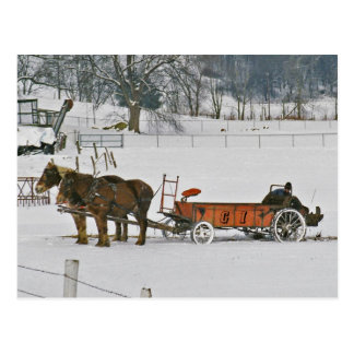Granjero del invierno de Amish en la Esparcidor-Po Postal