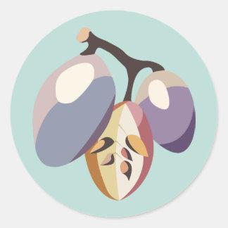 Grape fruit illustration pegatina redonda