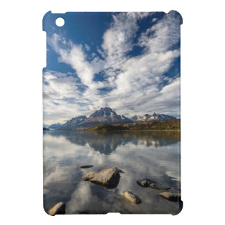 Gris de Lago. Cordillera del Paine 1