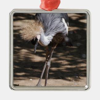 Grúa coronada africano ornaments para arbol de navidad