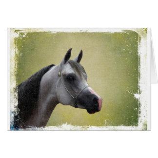 Grunge árabe del caballo felicitación