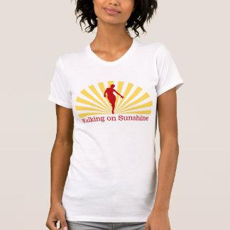 Grunge que camina en la sol camisetas